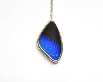 Real Butterfly Wing Jewelry Midnight Blue Butterfly Wing Necklace Gift For Mom Mothers Day Girlfriend Gift Butterfly Jewelry Pendant