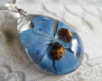 Best Friends-Ladybugs,Colorado Sky Blue Hydrangea Encased In Glass Teardrop Pressed Flower Pendant-Symbolizes Understanding-Nature's Art