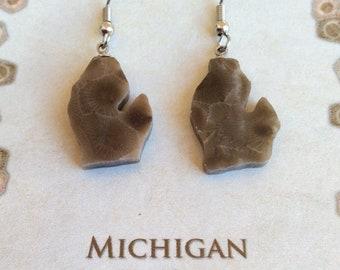 Michigan Petoskey Stone Earrings, Stone Jewelry, Drop Earrings, Michigander Gift, Jewelry, Gift for Her