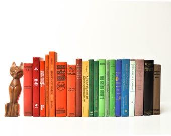 Vintage Rainbow Book Set - Twenty Vintage Hardcover Books