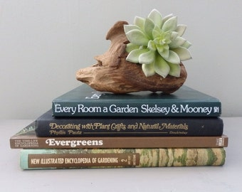 Old Book Collection Farmhouse Botany Trees, flowers Decorative Rustic Book Lot Home Decor