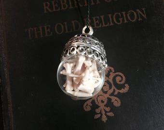 Vial Necklace - Bottle Necklace- real bone jewelry pendant-terrarium- terrarium necklace