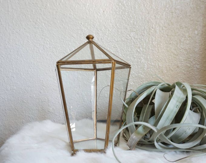 Tall Hexagon Brass Metal Glass Standing Curio Display Case / Box / Terrarium