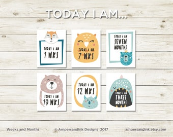 Today I am... Weeks and Months, Milestones, Photo Prop, Funky Animal Milestone Flash Cards, 4.25 x 5.5 cards