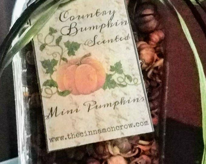 Featured listing image: Fall  scented mini pumpkins