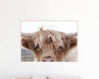Highland Cow Photo Wall Art, Highland Cattle Print, Farmhouse Printable Decor Art, Highland Cow Photography Download, Rustic Decor, hc3zlc