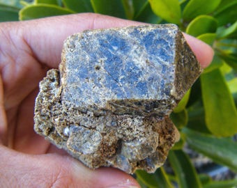 Raw Dravite Cluster with Large Crystallization, Brown Tourmaline, Beryl, Schorl, Specimen, Unique, Rough, Stone, Tourmaline Gemstone, Gems