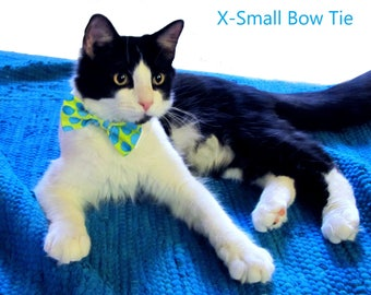 Teal Polka Dot Bow Tie, Necktie, or Bow on a Shirt Style Collar for both Dogs & Cats