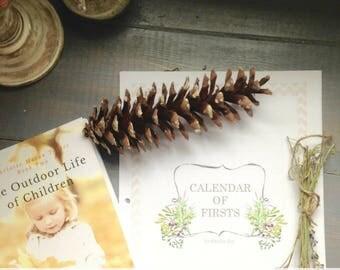 Calendar of Firsts