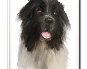 Newfoundland dog, Newfie, wall art, home decor, limited edition dog print.    Art print, dog, dogs, dog print, Newfoundland