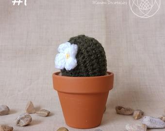Cactus #1 (crochet)