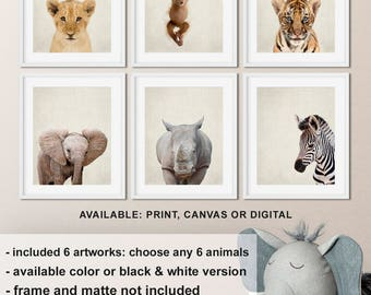 Best Baby Gift, Jungle Animal Nursery Decor Set of 6, Safari baby animal art, Nursery print set safari, Baby Zoo Animal Prints, Zoo animals