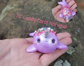 XL Candy Coral Narwhal