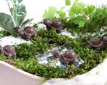 Smiling little tortoise Brown tortoise terrarium fairy garden Set of 5 pieces