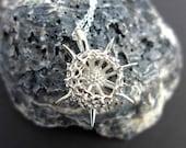 Spumellaria Plankton Pendant, Small Version-a spiky Radiolarian-Marine Biology-Science Jewelry