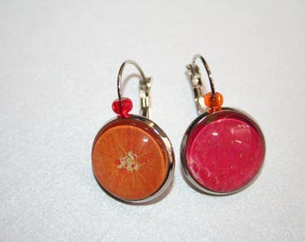 Collection vitamins touch of fruit earrings
