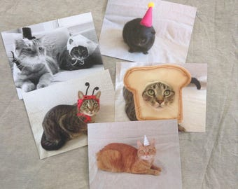 Missmaddymakes Postcards