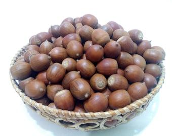 Natural Acorns 100 the harvest of 2017 . Real Acorns. Holiday Decor. Rustic Wedding. Natural Decor. Fall Decor.
