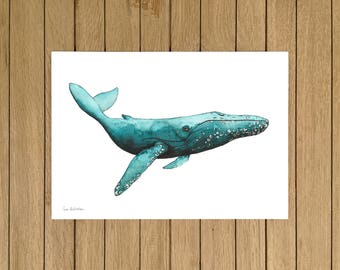 Whale, Watercolor Illustration, Giclée Print, A4 or A5 size