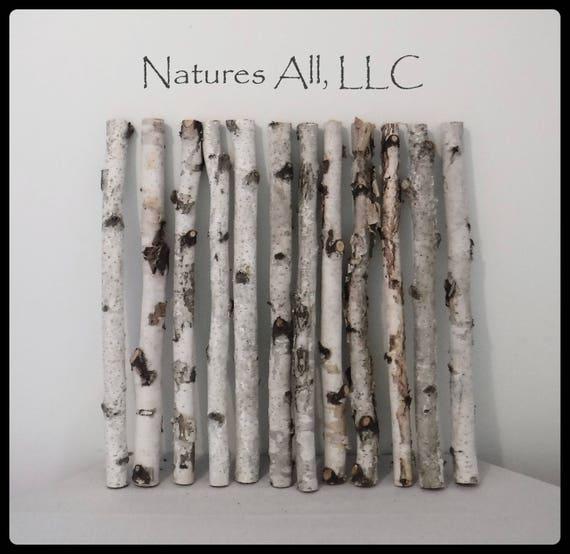 Decorative White Birch Sticks/Birch Sticks/20 Inch Lengths/12 Piece White Birch Set/Rustic Home Decor/Shipping Included