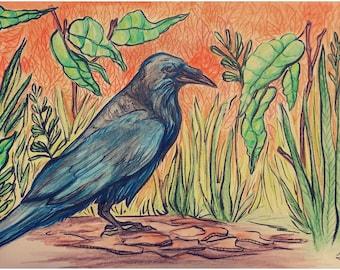 Crow in the Grass Watercolor & Ink Original