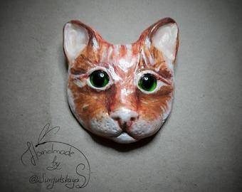 Brooсh cat.