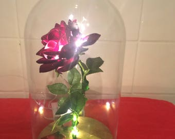 Beauty and The Beast Inspired Illuminated Enchanted Rose In Dome