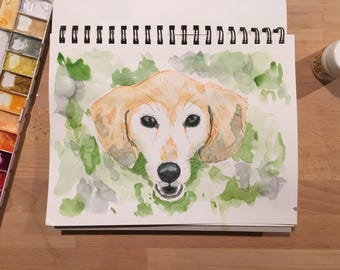 Pet Portrait Watercolor and Ink