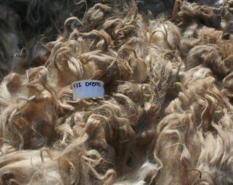 Drents Heideschaap raw fleece 1kg/2.2lb