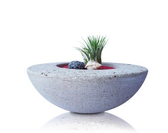 Handmaden Stone Zen Garden with Tillandsia Ionatha Rubra, Air Plant Planter, Modern Planter, Home Decor, Air Plant Holder, Mini Zen Garden