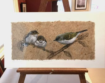 Sale unframed Grey Warbler Family on Harakeke paper 25% off