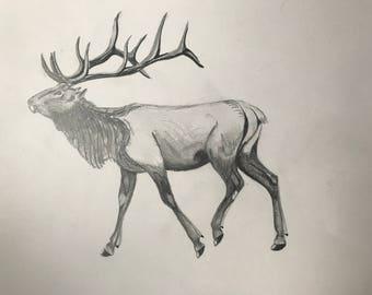Elk sketch print