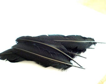 Large Black Natural Feathers_J06536431LA_Black Feathers_Pack of 7-10 pcs_of_7-8 in