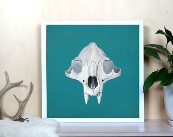 Bear Skull on Teal