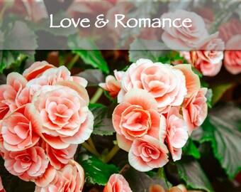 Love & Romance Reading