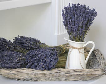 Farmhouse Decor, Dried French Lavender in a White Metal Pitcher, Small Arrangement, 100-150 stems in the bunch