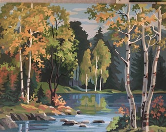 RESERVED MARY Paint by number 16 by 20 birch tree lake