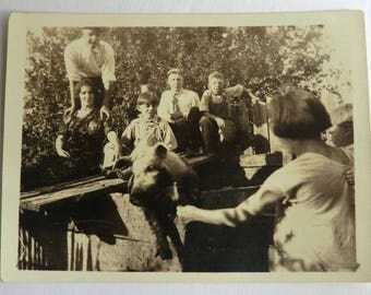 Vintage Photo Muddy Pig Trying to Escape Pen with Many Onlookers Quirky Photo