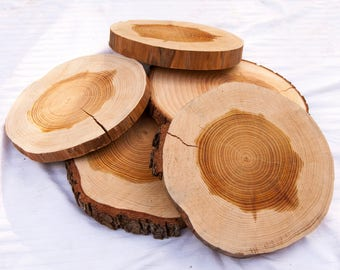 9 - 10 Inch Wood Slab, Large Wood Slice, Wood Centerpieces for Tables, Wood Slices for Wedding Centerpieces, Wood Slice Chargers