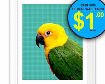 Tropical Bird Art Print, 8x10 Inch, Instant Download, Digital Print