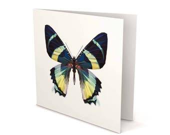 Butterfly Greeting Card, Butterfly card, Butterfly, Greeting Card, Square Card, Blank card