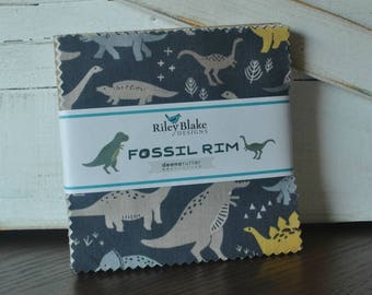 """Charm Pack - 5"""" Squares - Fossil Rim by Deena Rutter for Riley Blake, Precut"""