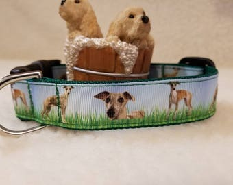 Whippet/Greyhound Handmade Dog Collar 1 Inch Wide Medium Only