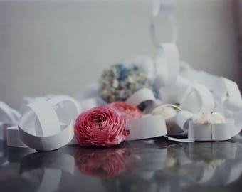 Still Life Flower Portrait Film Photography Print
