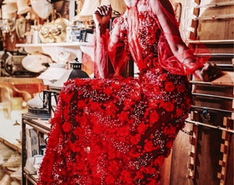 Lady In Red Beaded Dress- Special occasions i.e. weddings, anniversary, red carpet, garden parties