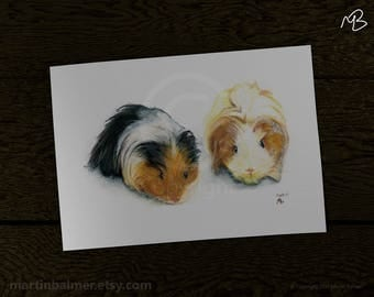Two Long Haired Guinea Pigs Print, of watercolour pencil drawing, Guinea Pig portraits, 2 Guineapigs