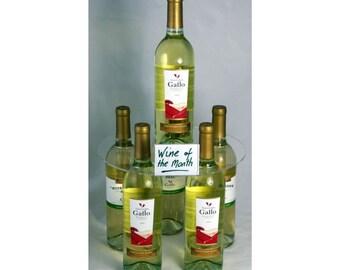 Acrylic Wine Bottle Merchandiser. Bottle display. Restaurant. Pub. Display shelf. Wine display. - AWBM1