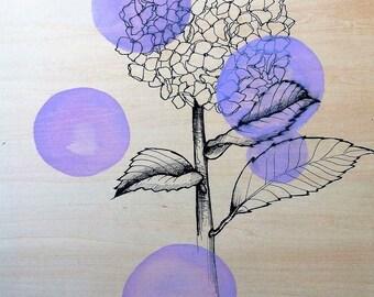 Giclee fine art print of illustration of Hydrangea on wood