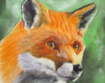 A Fox red and white - pet portrait in pastel - animal Art