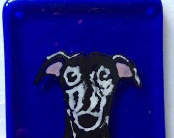 Cassie  the Greyhound Fused glass coaster